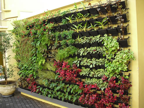 Benefits of green walls khd landscape engineering solutions for Green wall advantages