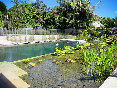 Bio Filtration For Bacteria Free Natural Pools Waterco