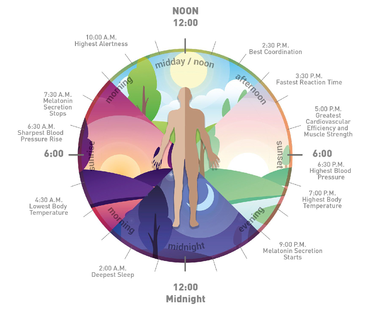 Human Centric Lighting for Better Circadian Rhythm
