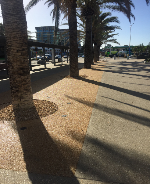 Permeable Tree Pits for Coastal Conditions