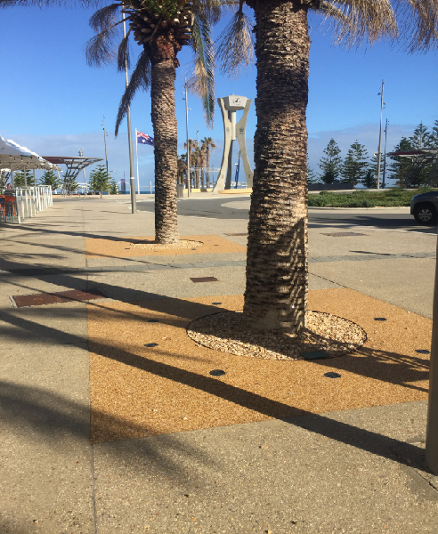 Permeable Tree Pits for Recreation Facilities