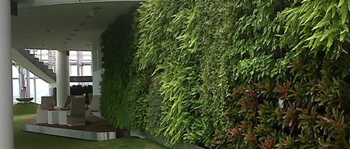 green vertical plant wall
