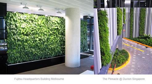 Vertical Green Wall System Elmich Australia Newington Nsw