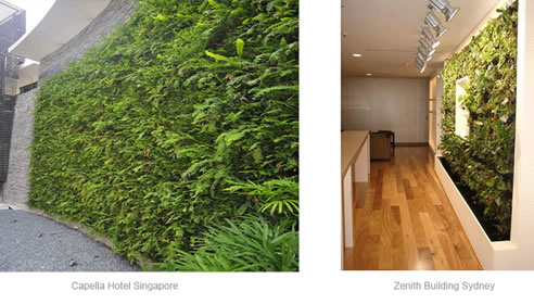 Vertical Green Wall System Elmich Australia Newington Nsw