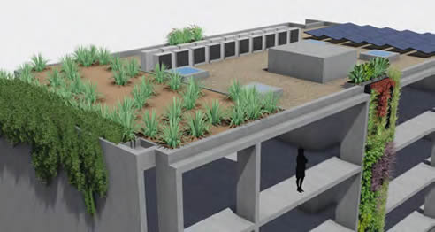vertical and roof top garden concept