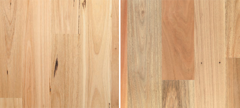 Australian Species Hardwood Timber Veneer | Embelton