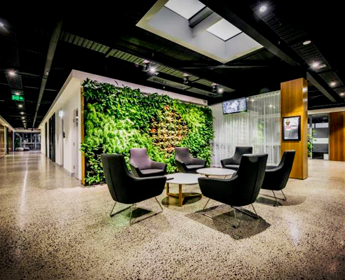 Vertical garden feature wall from Atlantis Corporation